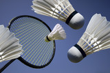 Badminton action - 11291004
