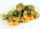 fanny smal, yellow fruits physalis from Colombia poster