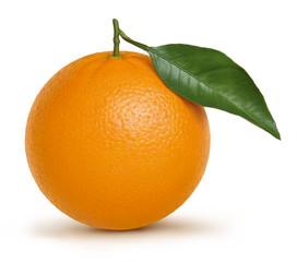 Orange illustration