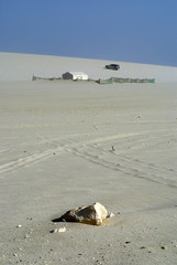 desert tent,qatar