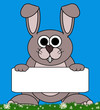 Bunny Rabbit Cartoon - Holding Isolated CopySpace Board