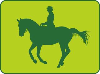Dressurreiter Galopp Green