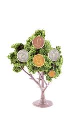 money growing on tree