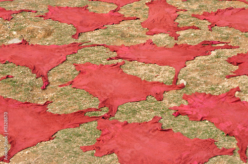 Red dyed animal skins drying outdoors, Fes, Morocco