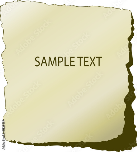Structure of paper. Vector illustration
