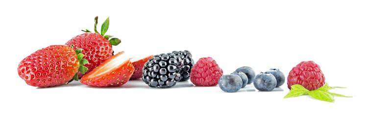 Frutti di Bosco 25 r