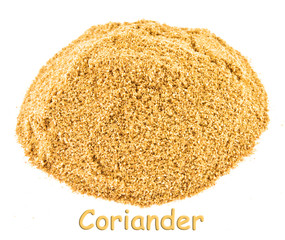 Spice - coriander on a white background.