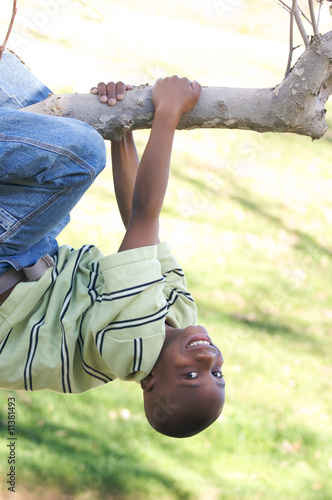 Young Boy in a Tree