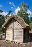 Stall in vikings village poster