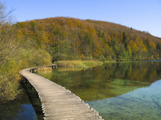 Autumn foliage, green lake and wooden path