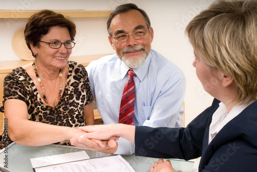partners shaking hands  making a agreement