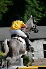 Equitation : saut d'obstacle