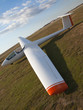 Glider - 11399232