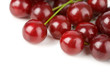 sweet cherries isolated