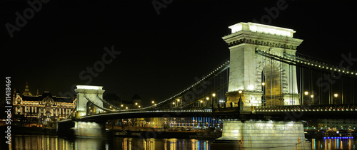 The Chain Bridge and the Royal palace of Buda in Budapest