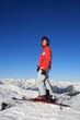 Skifahrer am Gipfel