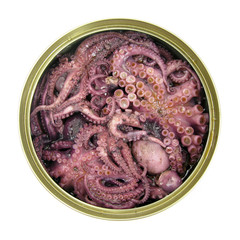 Octopus seafood violet in tin can