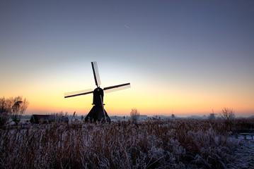 wind mills in theevening sun
