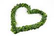 Un cuore per la natura