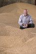 Portrait of smiling farmer cupping wheat grains on grain heap