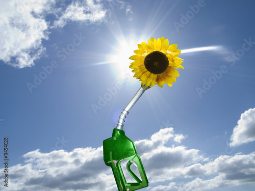 Green gas pump with sunflower at end of nozzle