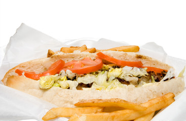 Philly Cheesesteak and French Fries