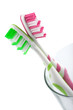 two colorful toothbrushes isolated