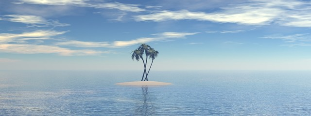 Island with palms in ocean