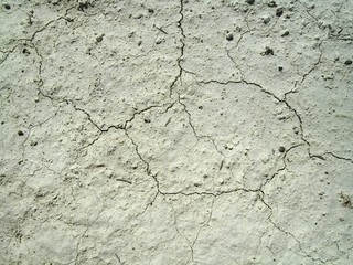 fissures on the ground