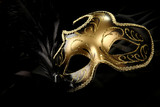 ornate carnival mask over black silk background