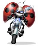 Fototapety motococcinella