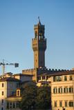 Florence, Palazzo Vecchio, piazza della Signoria. poster