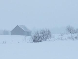 Paix hivernale