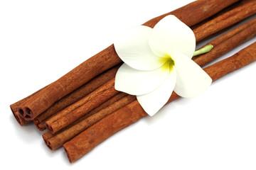 fleur blanche de frangipanier sur bâtons de cannelle