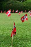 Norwegian flags in a garden poster