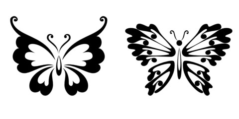Pure black lines of butterflies