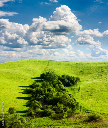 beautiful spring landscape