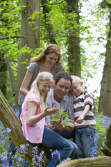 Family looking at fern in forest