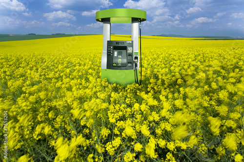 Fuel pump in field of flowers