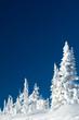Leinwanddruck Bild - Winter fairy-tale