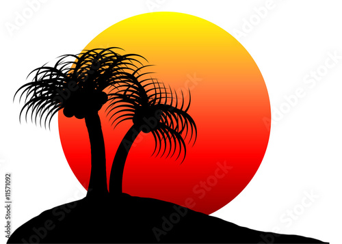 Oasis Sunrise - Isolated On White