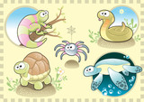 Reptiles and Spider Family, with Background poster