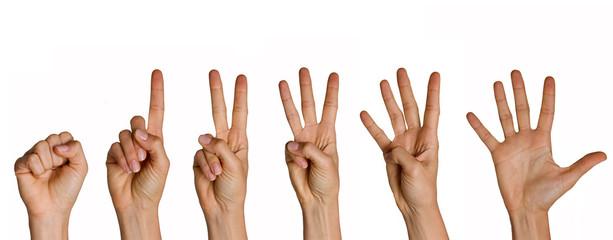 Zählende Hand von null bis fünf