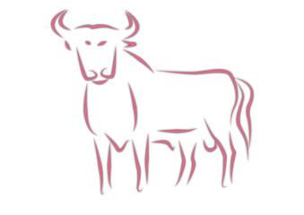 zodiaco - toro