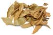feuilles sèches de cannelle