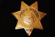 Police Star - 11601430