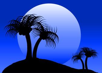 Blue Moon Tropical Scene