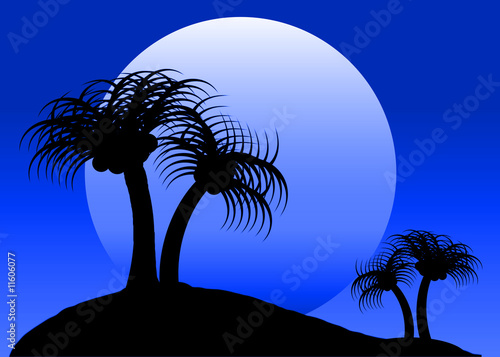 Blue Moon Tropical Scene