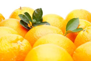 leaves on oranges