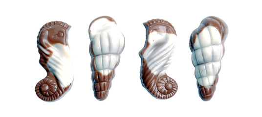 sweet chocolate candies in the form of marine shellfish